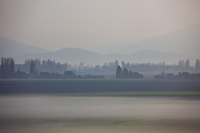 Skagit Valley-1